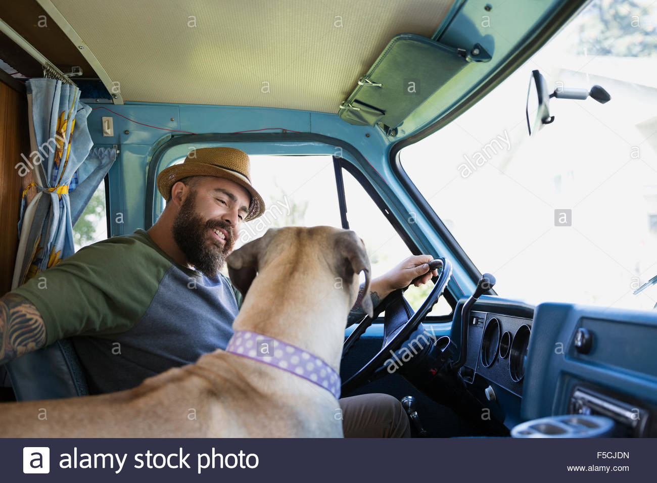 Man and dog in van - Stock Image