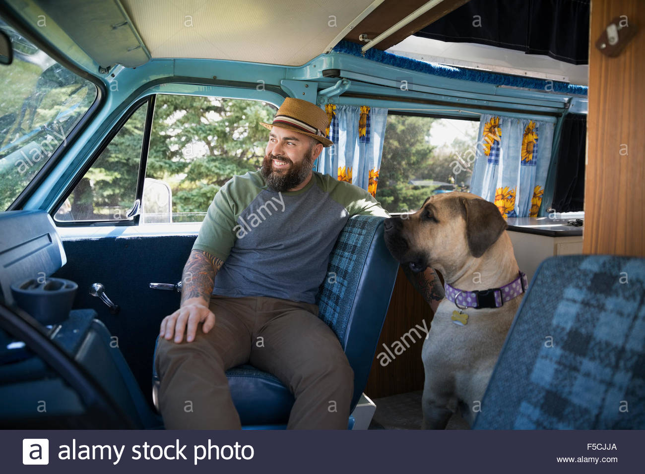 Smiling bearded man with dog in van - Stock Image