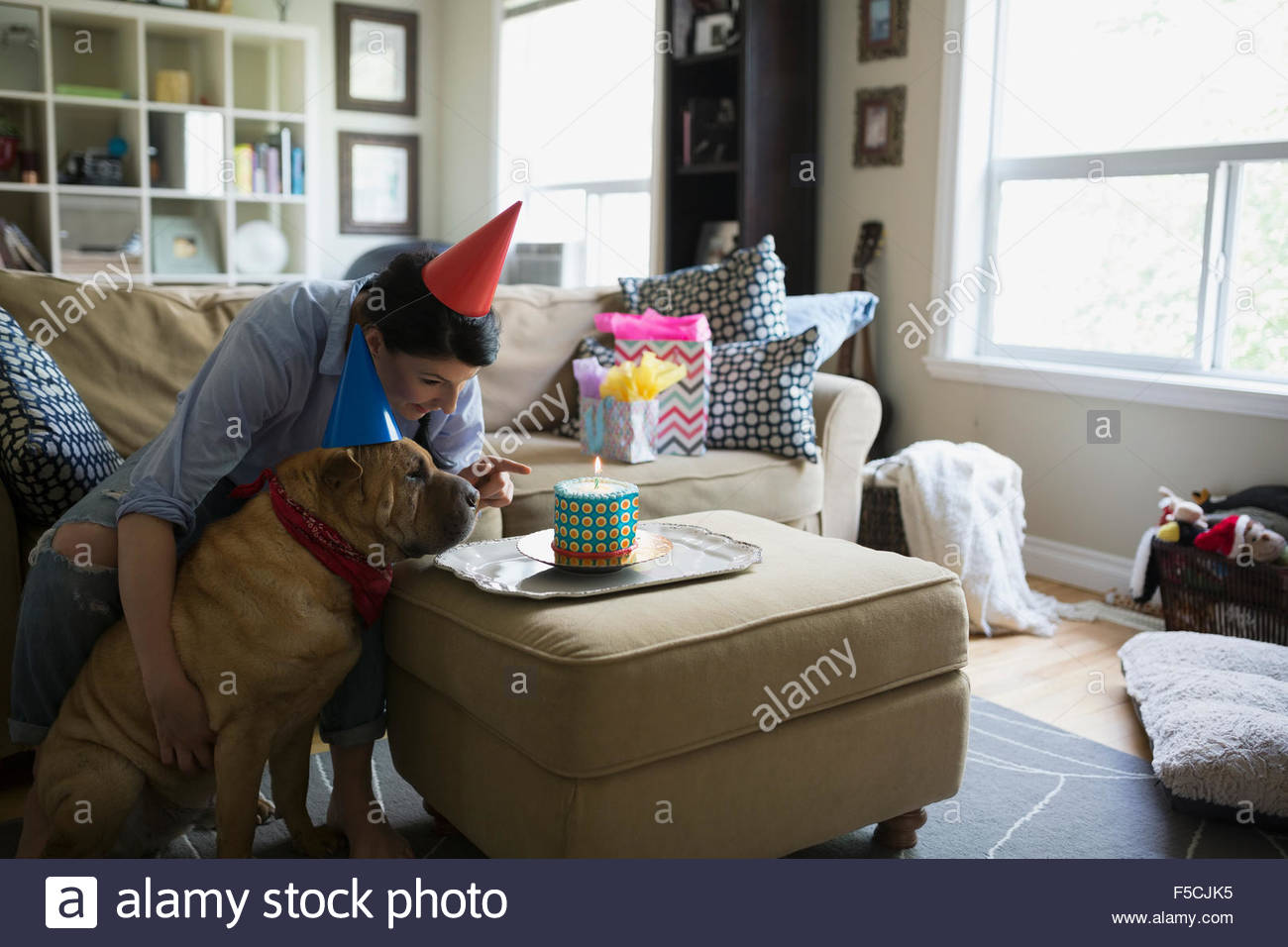 Woman and dog celebrating birthday with cake - Stock Image