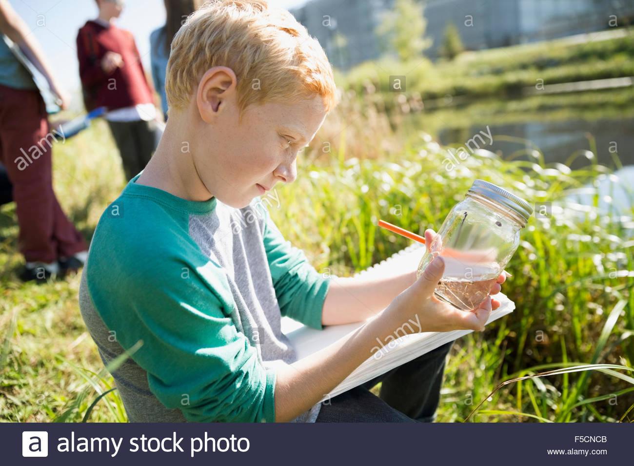 Curious schoolboy examining jar on field trip - Stock Image