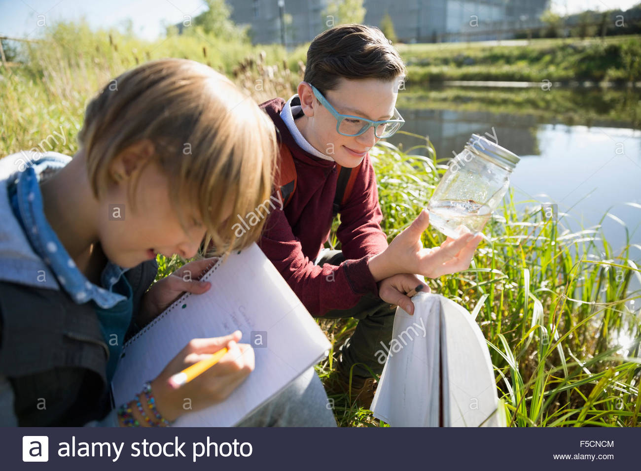 Students examining water and taking notes field trip - Stock Image