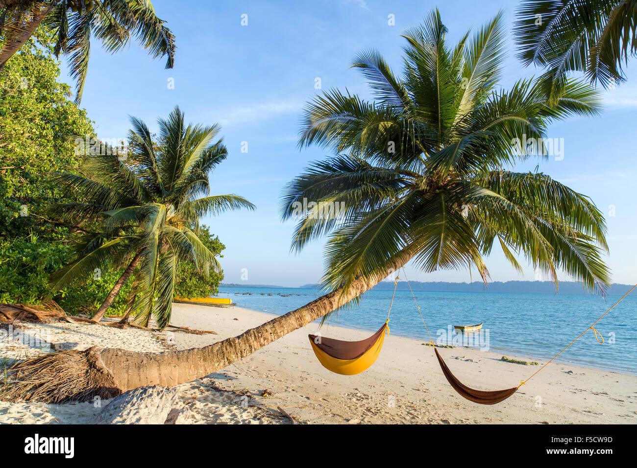 Palms and hammocks at a beautiful beach on Havlock islands - Stock Image