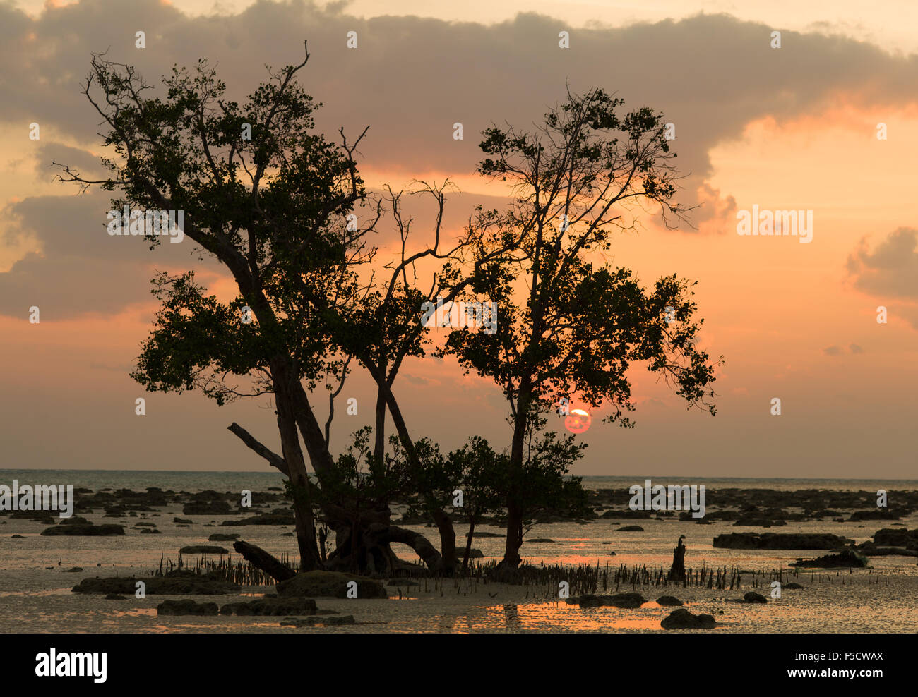 Magic sunset on Havlock island beach - Stock Image