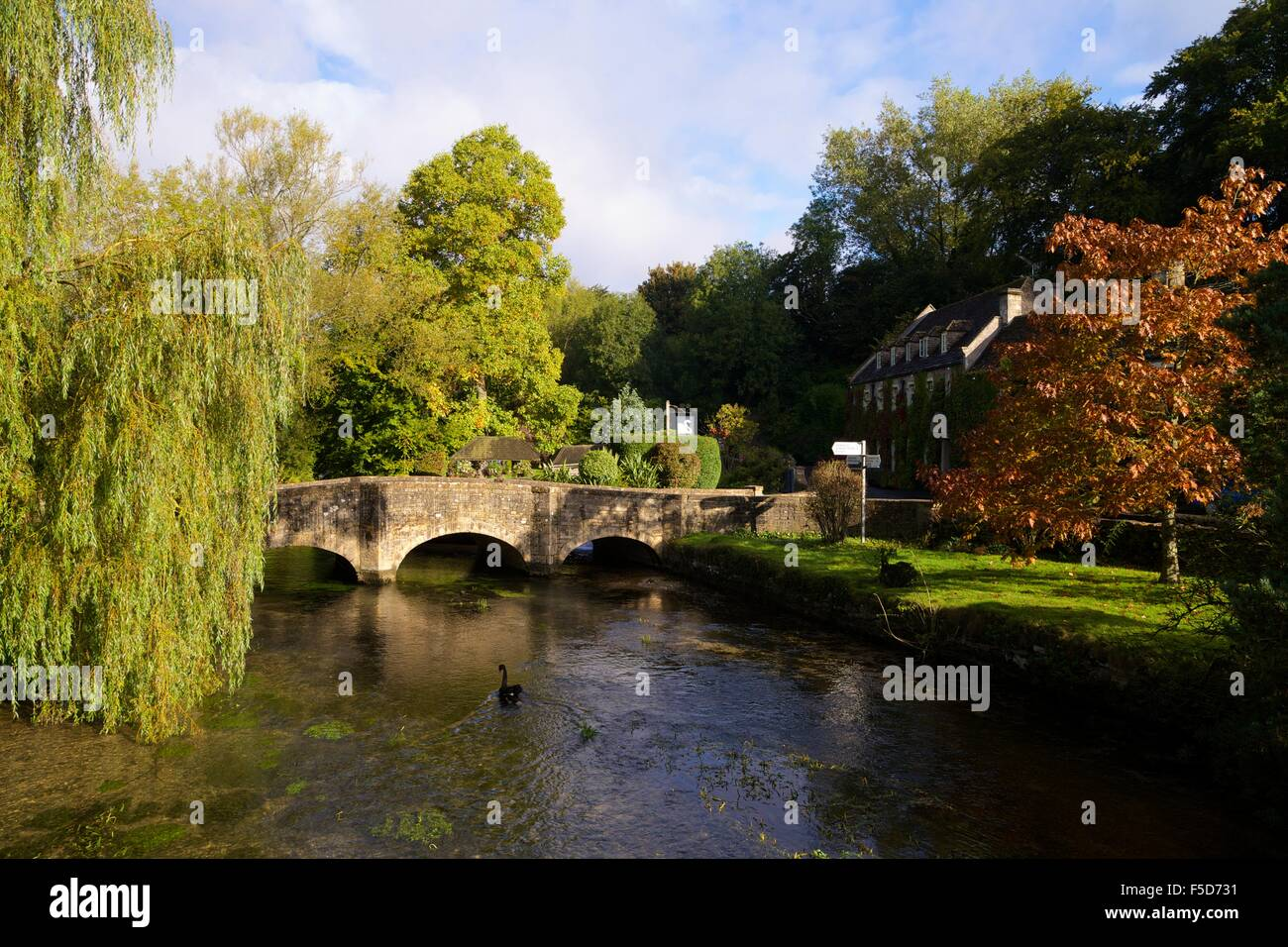 River Coln and Swan Hotel,  Bibury, Cotswolds, Gloucestershire, England, UK, GB, Europe - Stock Image