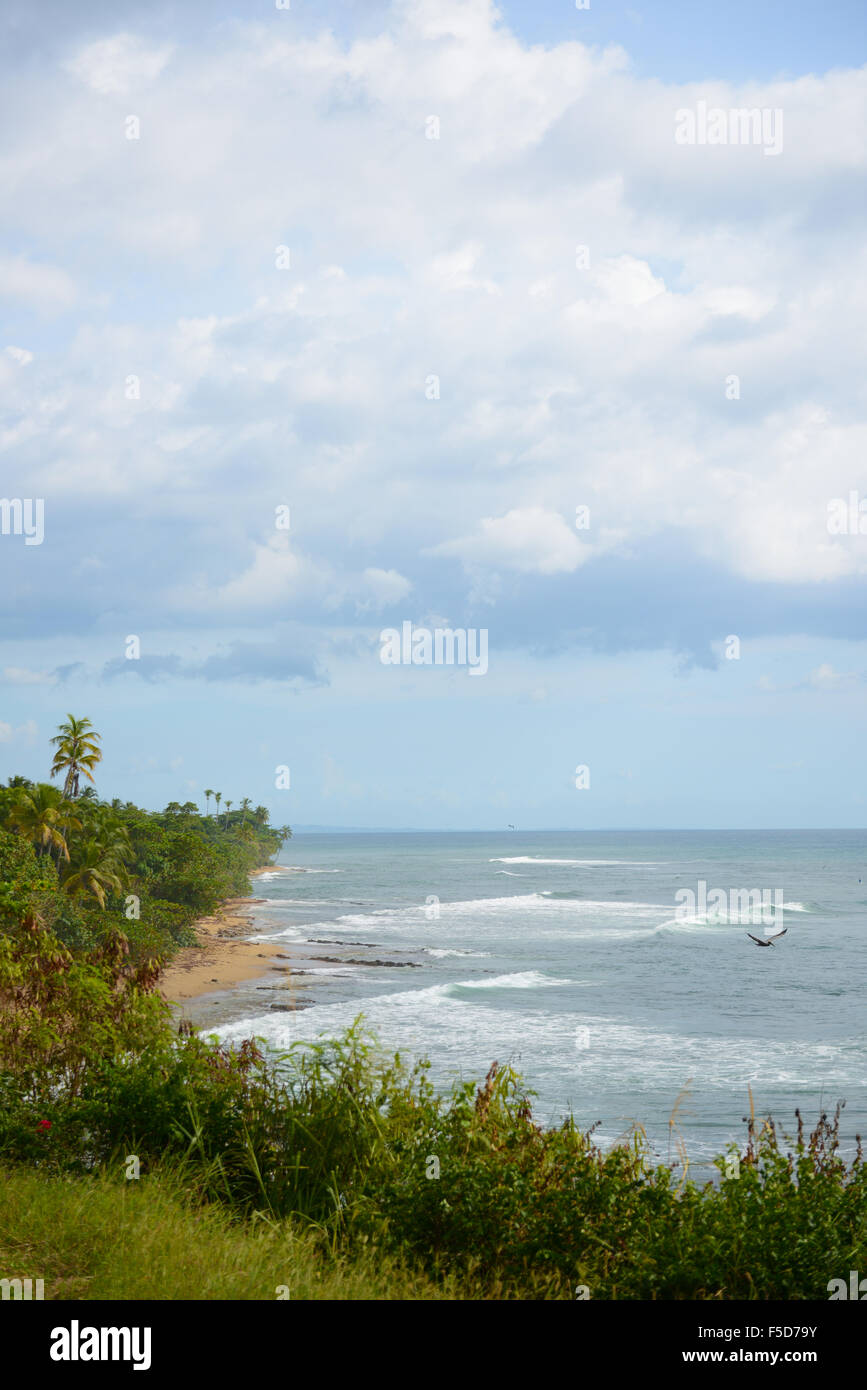 Indicators Beach is a popular surfing spot in Rincon, Puerto Rico. USA territory. Caribbean Island. - Stock Image