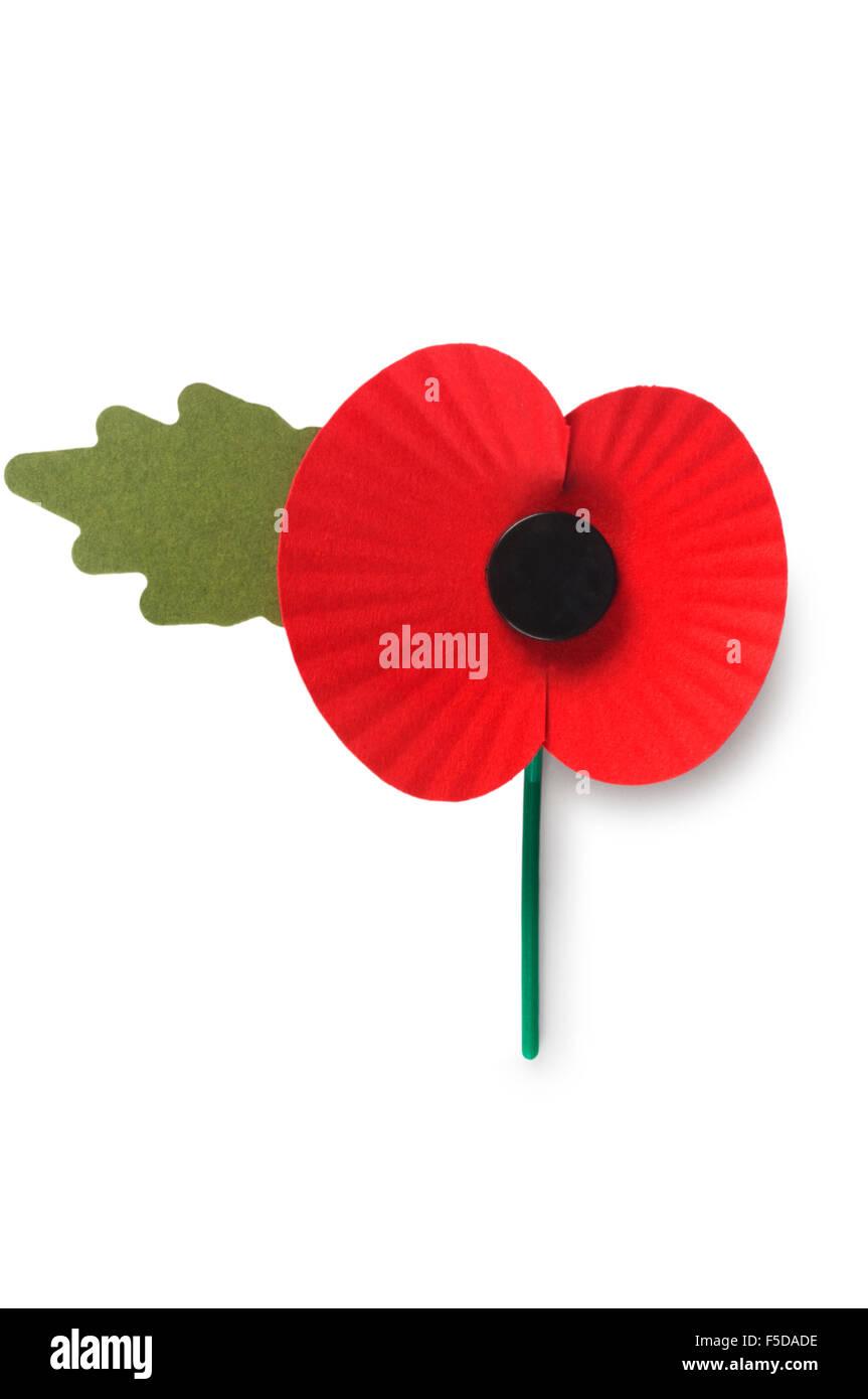 Poppy - Stock Image
