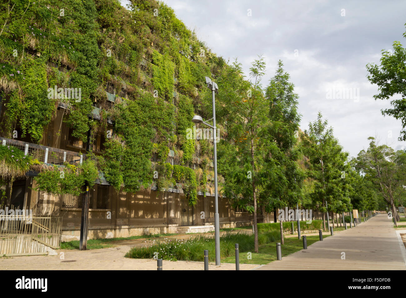 Green wall in a sustainable building - Stock Image