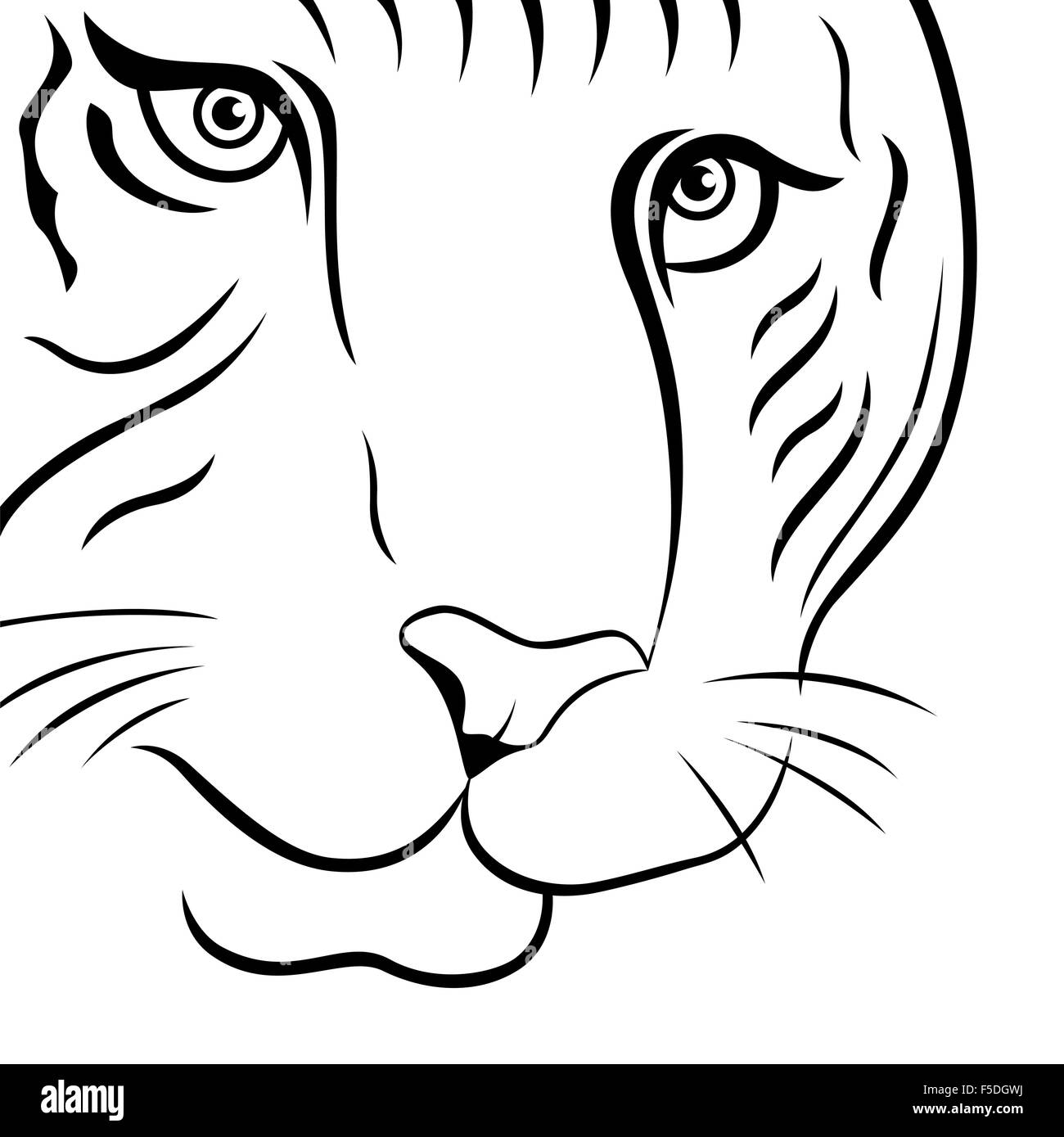 Part of funny tiger face, hand drawing vector outline isolated on a white background - Stock Vector