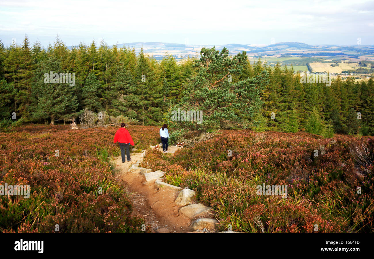 Two casual hill walkers descending from Oxen Craig, Bennachie, Aberdeenshire, Scotland, United Kingdom. - Stock Image