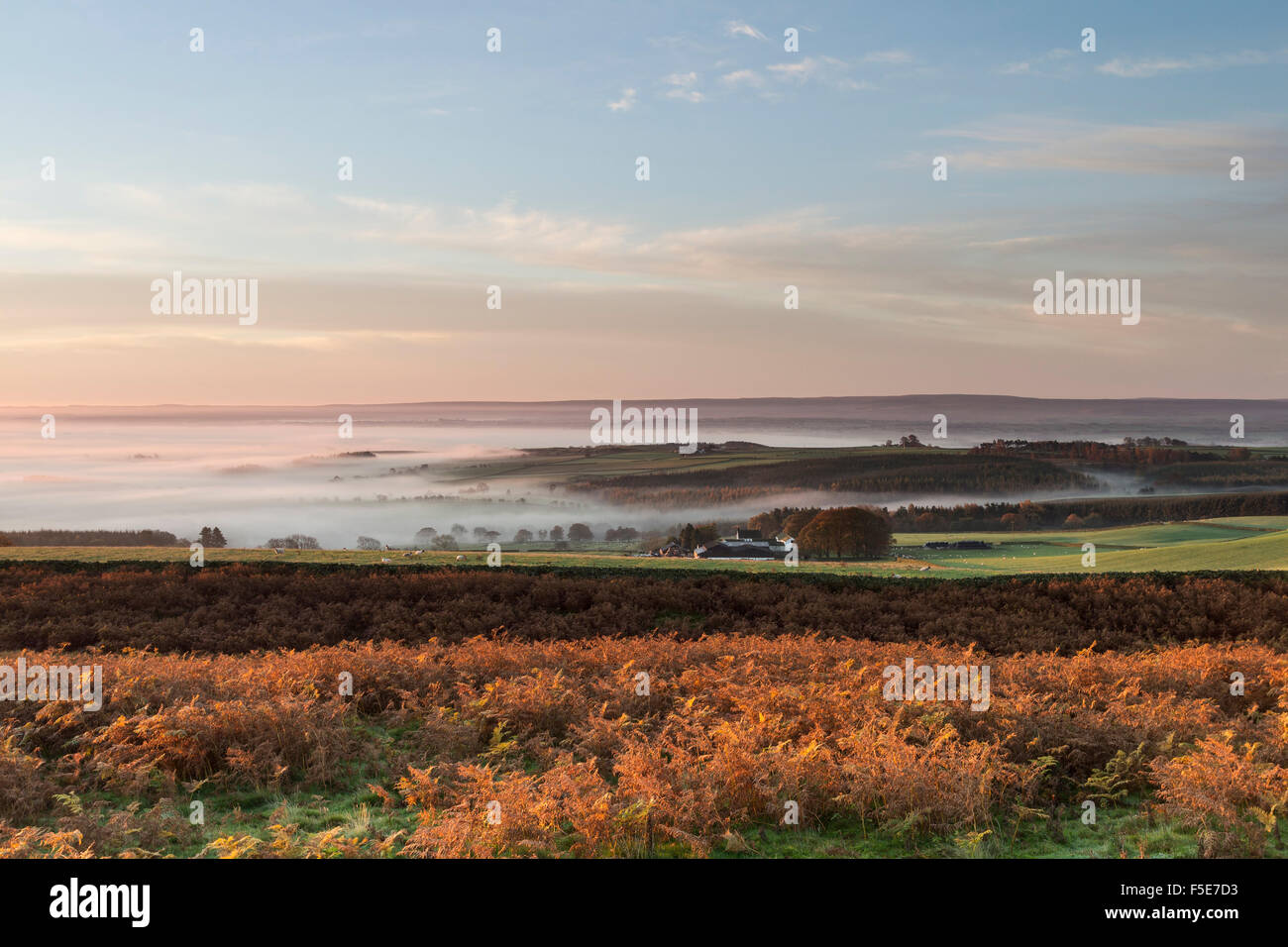 Teesdale, County Durham, UK. 3rd November 2015. UK Weather. It was a frosty and misty start to the day for some - Stock Image