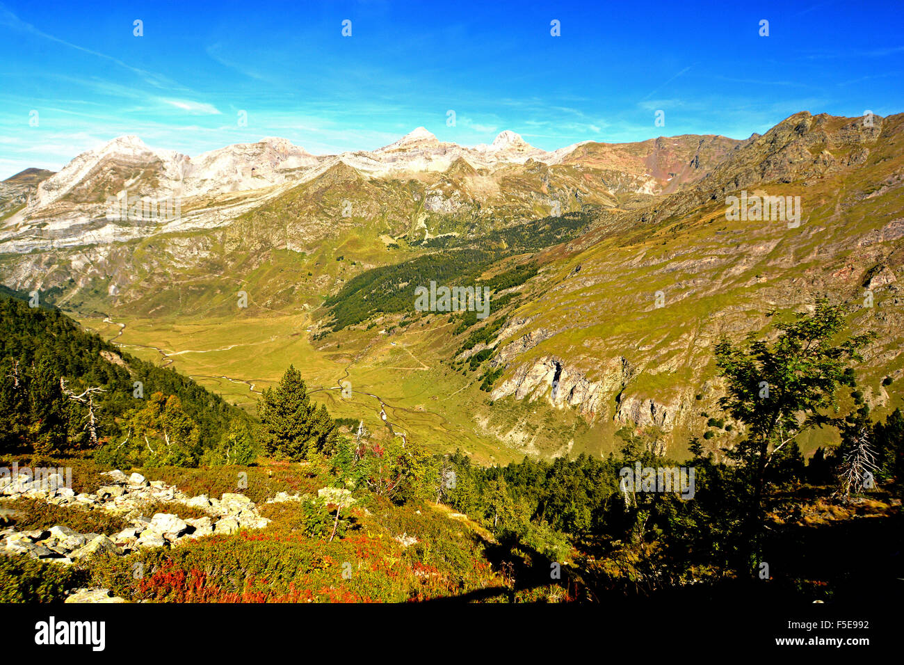 Pyrenees mountains rise above the Osseau valley, Pyrenees-Atlantiques, France, Europe - Stock Image