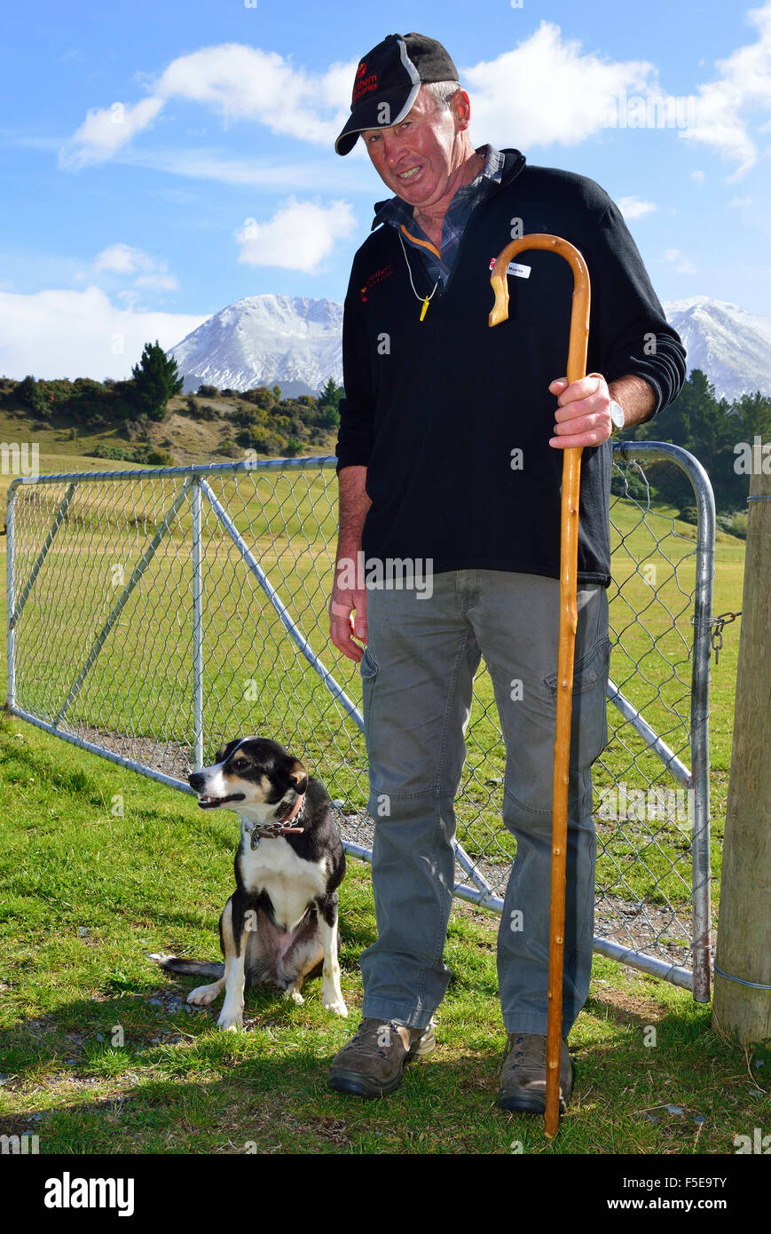Sheep farmer and his trusty sheep dog on a merino sheep farm St Nicholas Farm Queenstown with snow capped southern - Stock Image