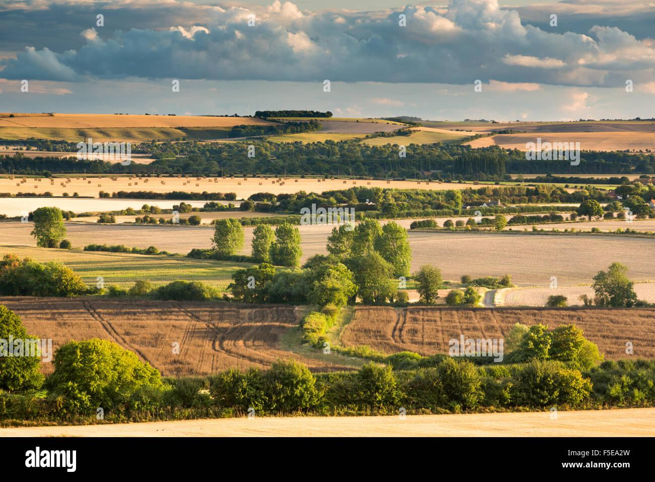 Wittenham Clumps, Thames Valley, Oxfordshire, England, United Kingdom, Europe - Stock Image