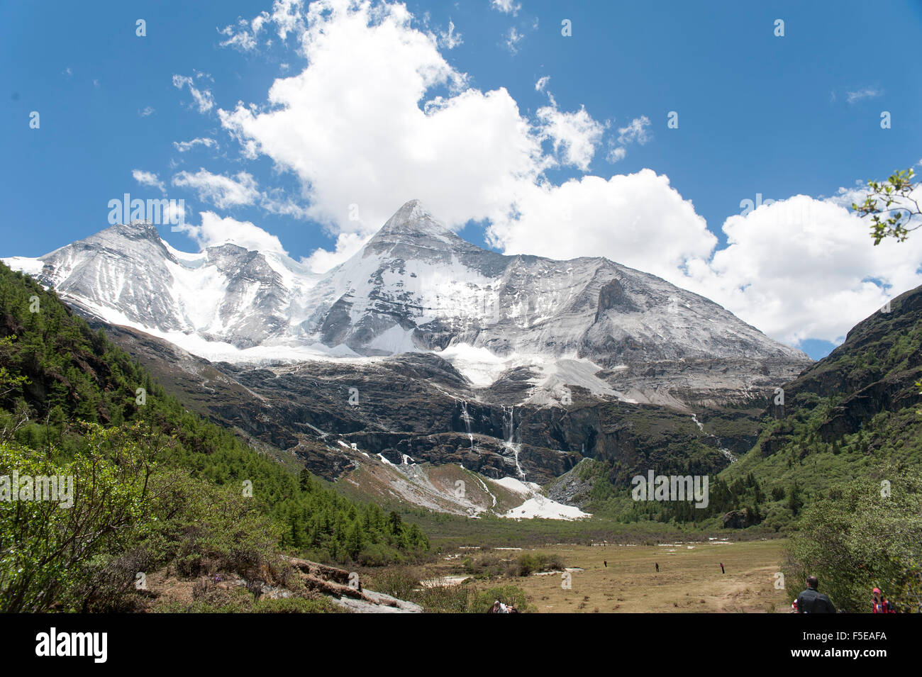 Tibet snow mountain with Grassland in China - Stock Image