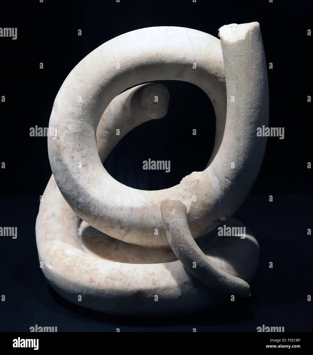 Snake 2nd century BC at the Archaeoligical Museum at Empuries Catalonia Spain - Stock Image