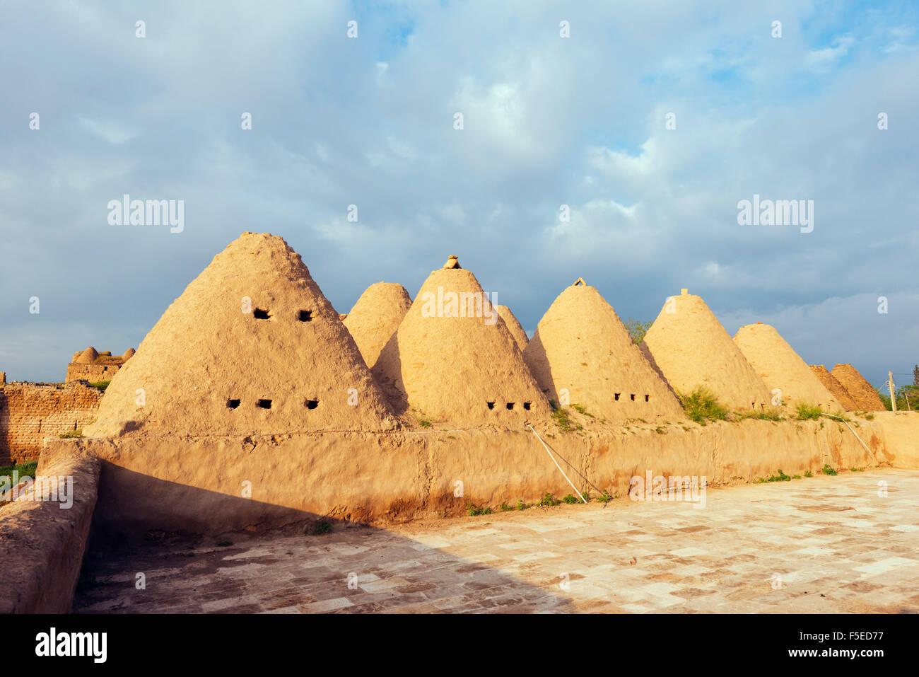 Bee-hive mud brick houses, village of Harran, Anatolia, Turkey, Asia Minor, Eurasia - Stock Image