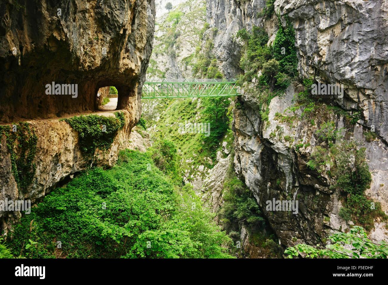 Footpath through Desfiladero del Rio Cares, Picos de Europa, Parque Nacional de los Picos de Europa, Asturias, Cantabria, - Stock Image