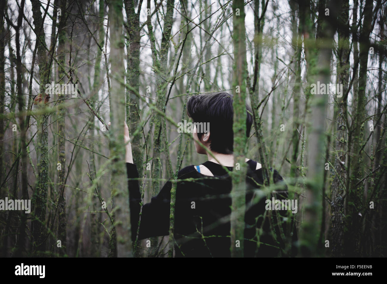 Rear view of a woman lost in the forest - Stock Image
