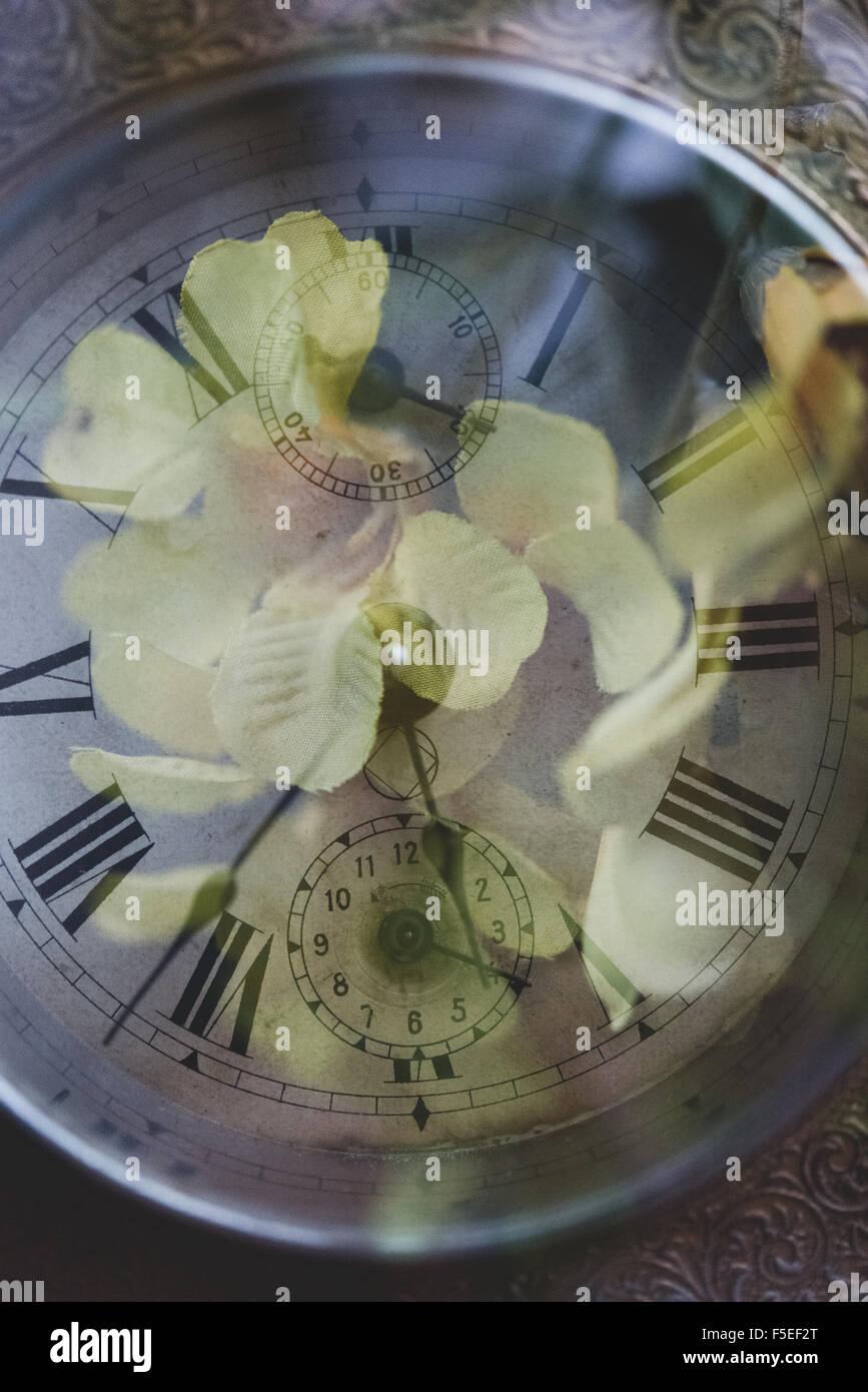 Double exposure of watch and flowers - Stock Image