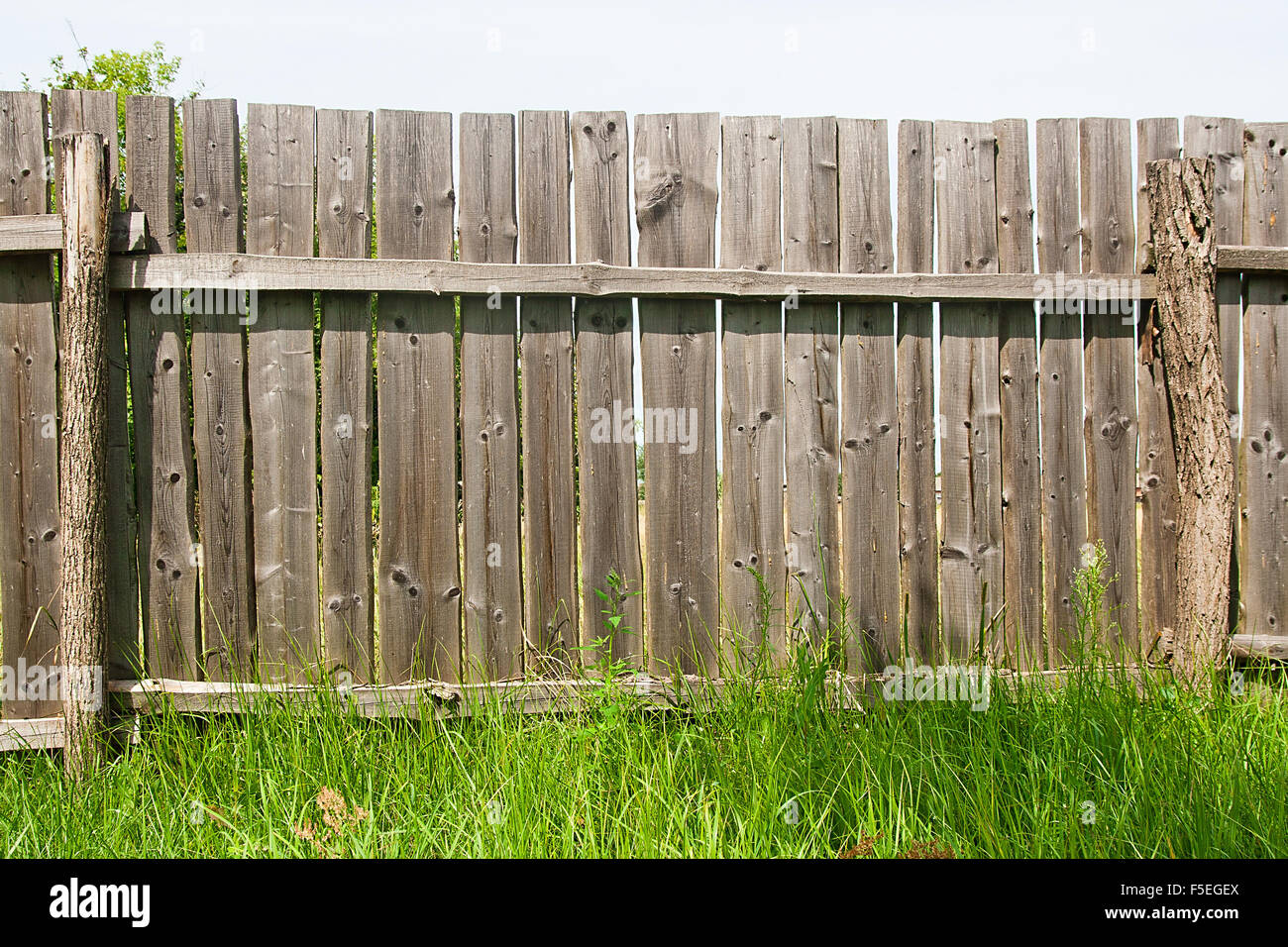 wood picket fence texture. Vintage Background Texture. Classic Old Wooden Fence And Green Grass At The Bottom. Wood Picket Texture