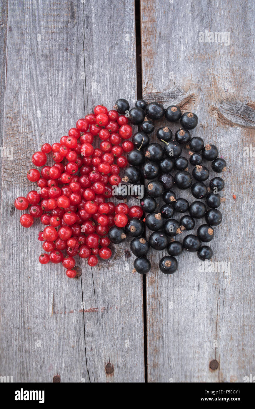 Redcurrants and blackcurrants on a wooden table - Stock Image