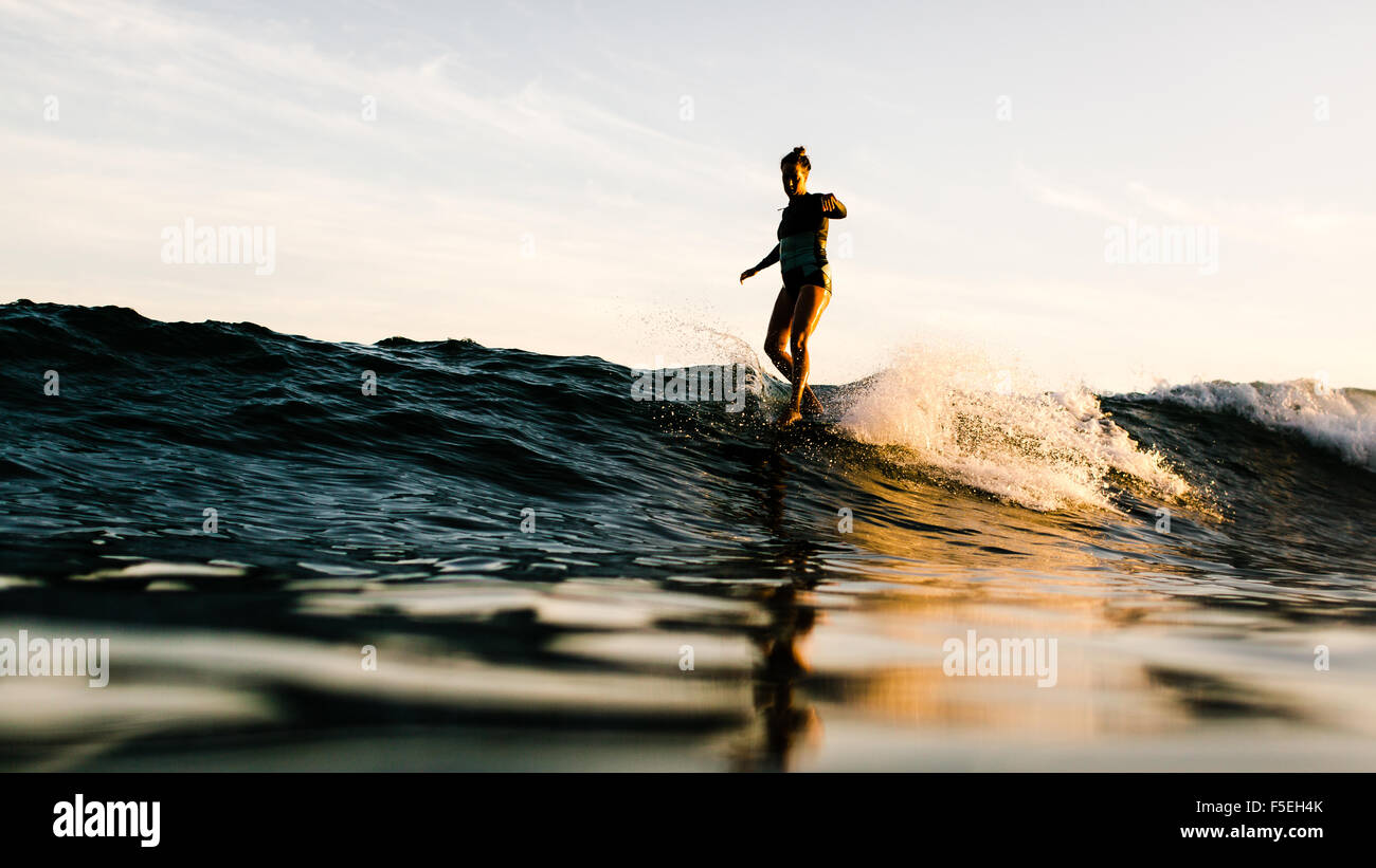 Woman surfing, Malibu, California, USA - Stock Image