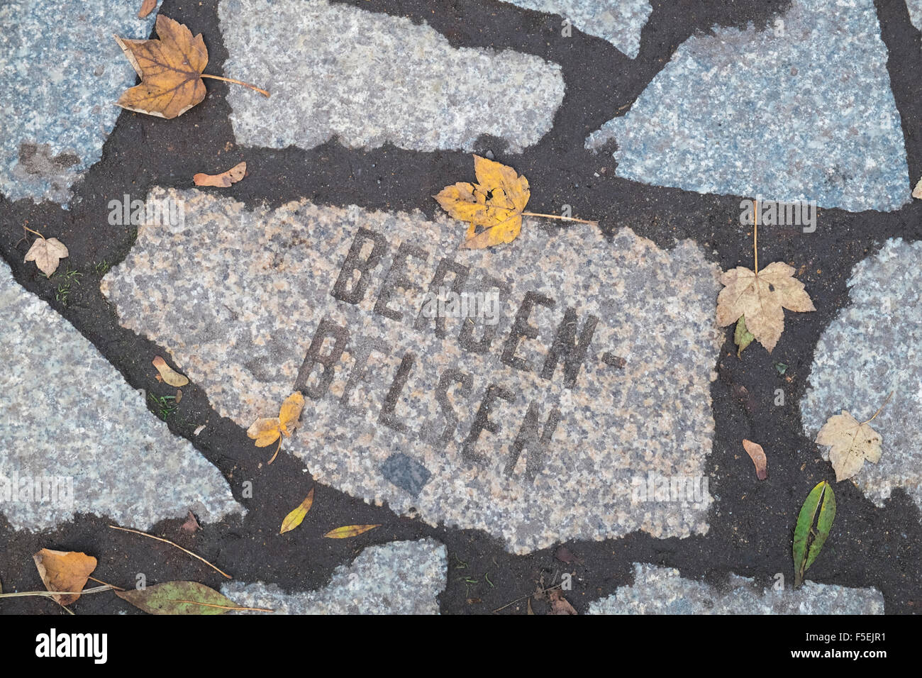 Stone with Bergen-Belsen at the Memorial to Murdered Sinti and Roma People, Mitte, Berlin, Germany Stock Photo