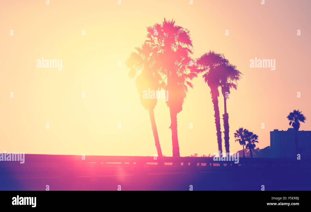 Vintage stylized picture of palms silhouettes at sunset, space for text, Santa Monica, USA. Stock Photo