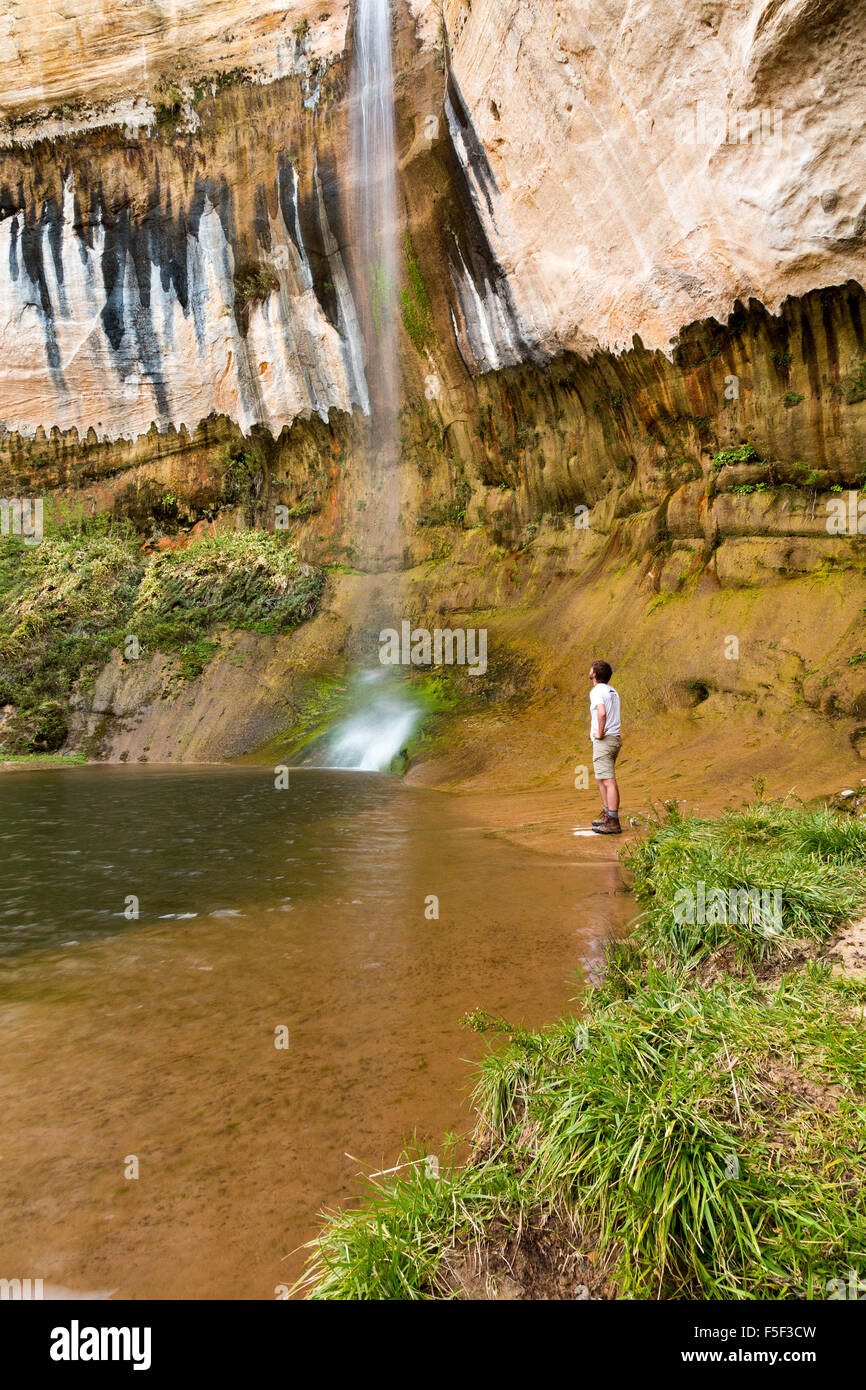 A hiker admiring Upper Calf Creek Falls, Grand Staircase-Escalante National Monument, Utah Stock Photo