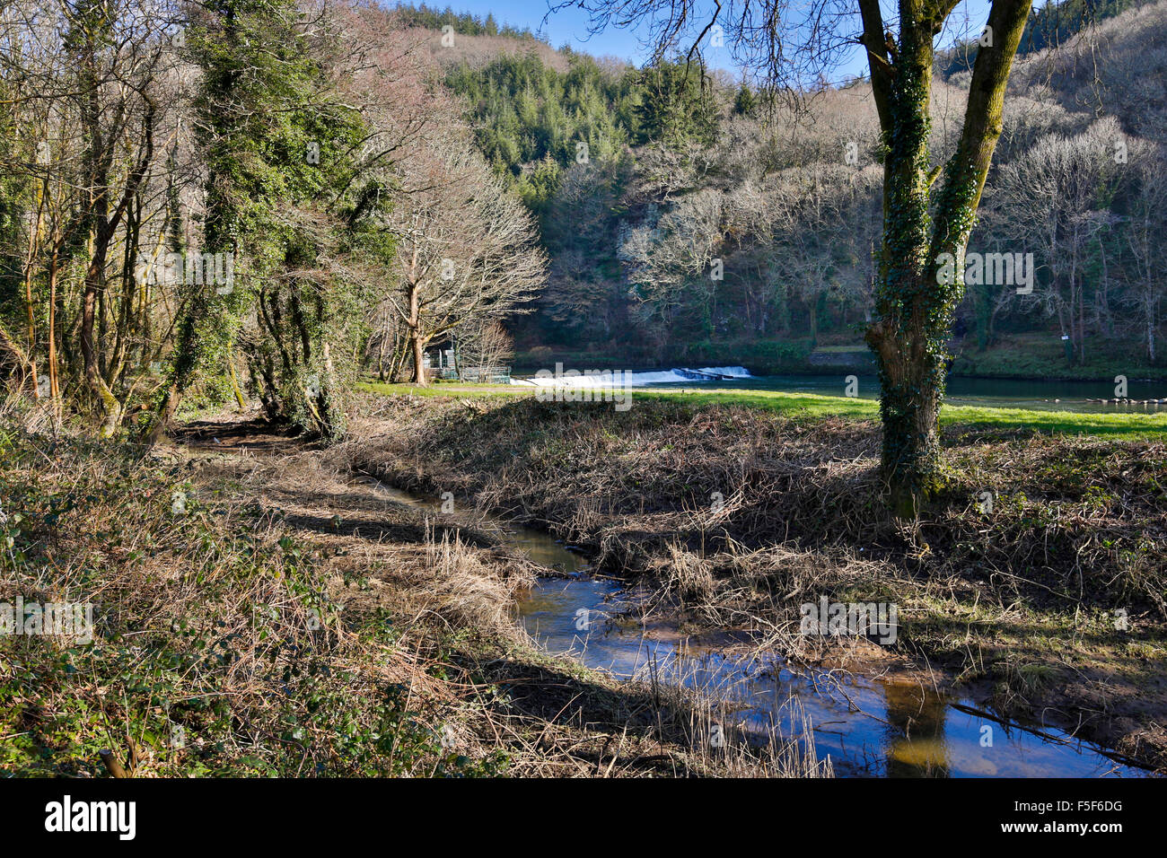 Tamar ANOB; Winter; Devon; UK Stock Photo