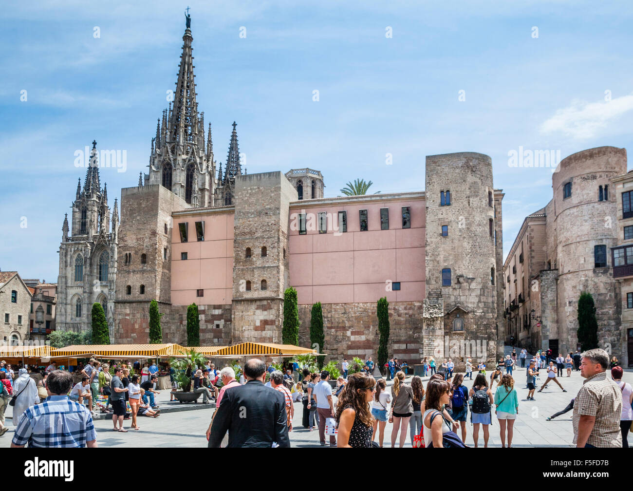 Spain, Catalonia, Barcelona, Barri Gòtic, view Plaça Nova with Barcelona Cathedral, the Romanesque towers - Stock Image