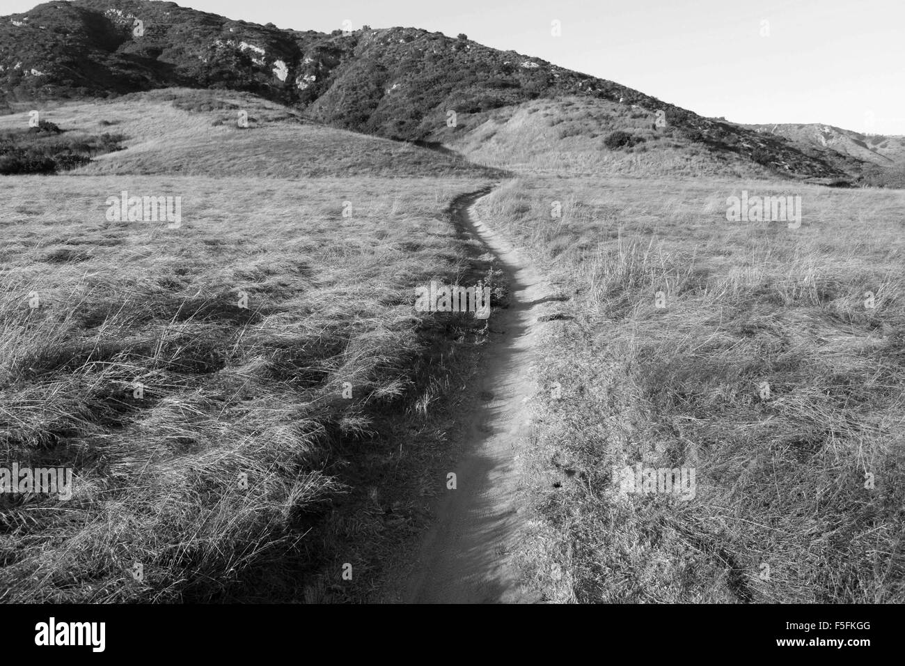 Laguna Beach, California, USA. 06th May, 2012. MTB winding single track trail through a meadow in Aliso and Wood Stock Photo