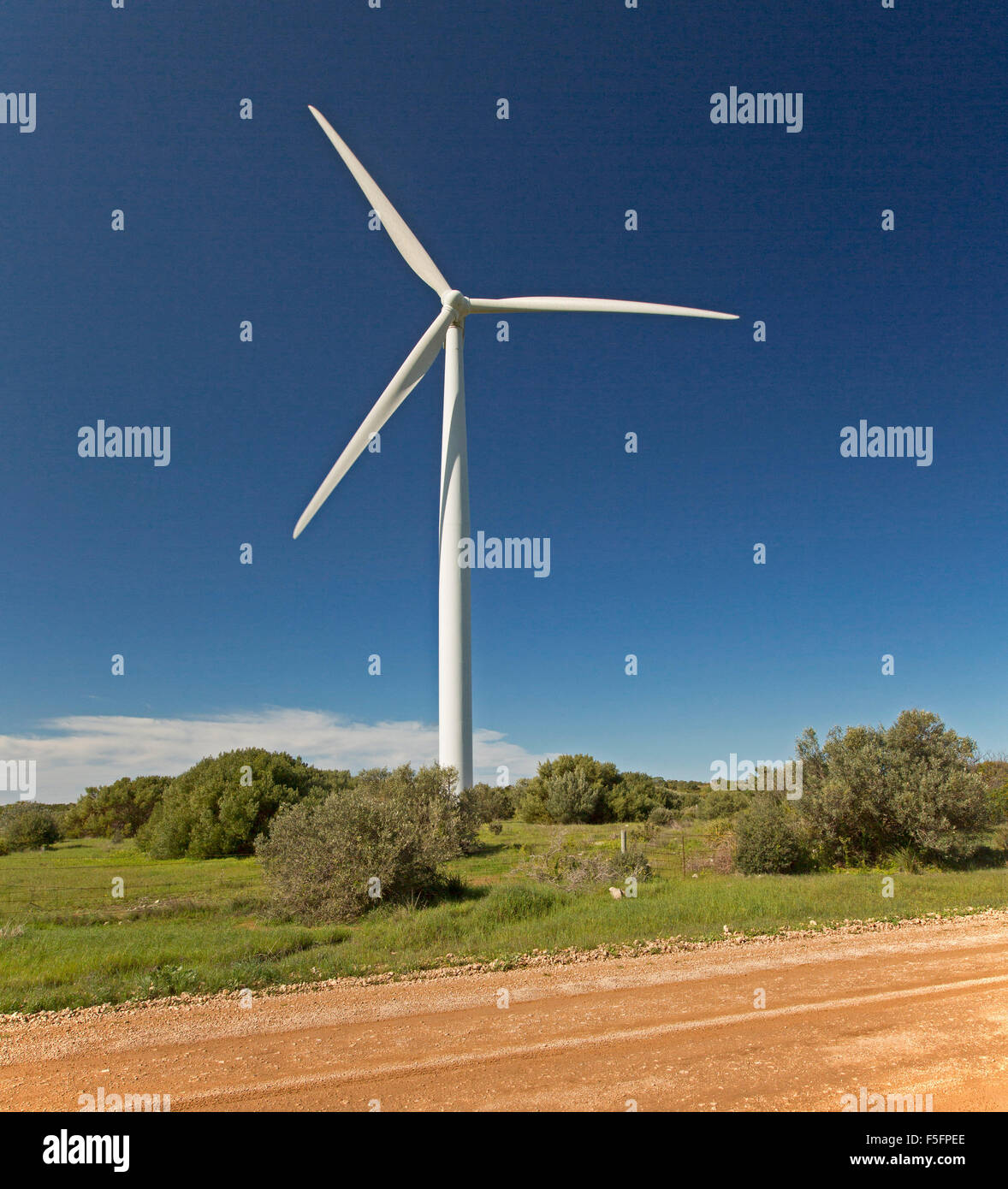Wind turbine rising among native vegetation beside road into blue sky at Wattle Point wind farm on Yorke Peninsula - Stock Image