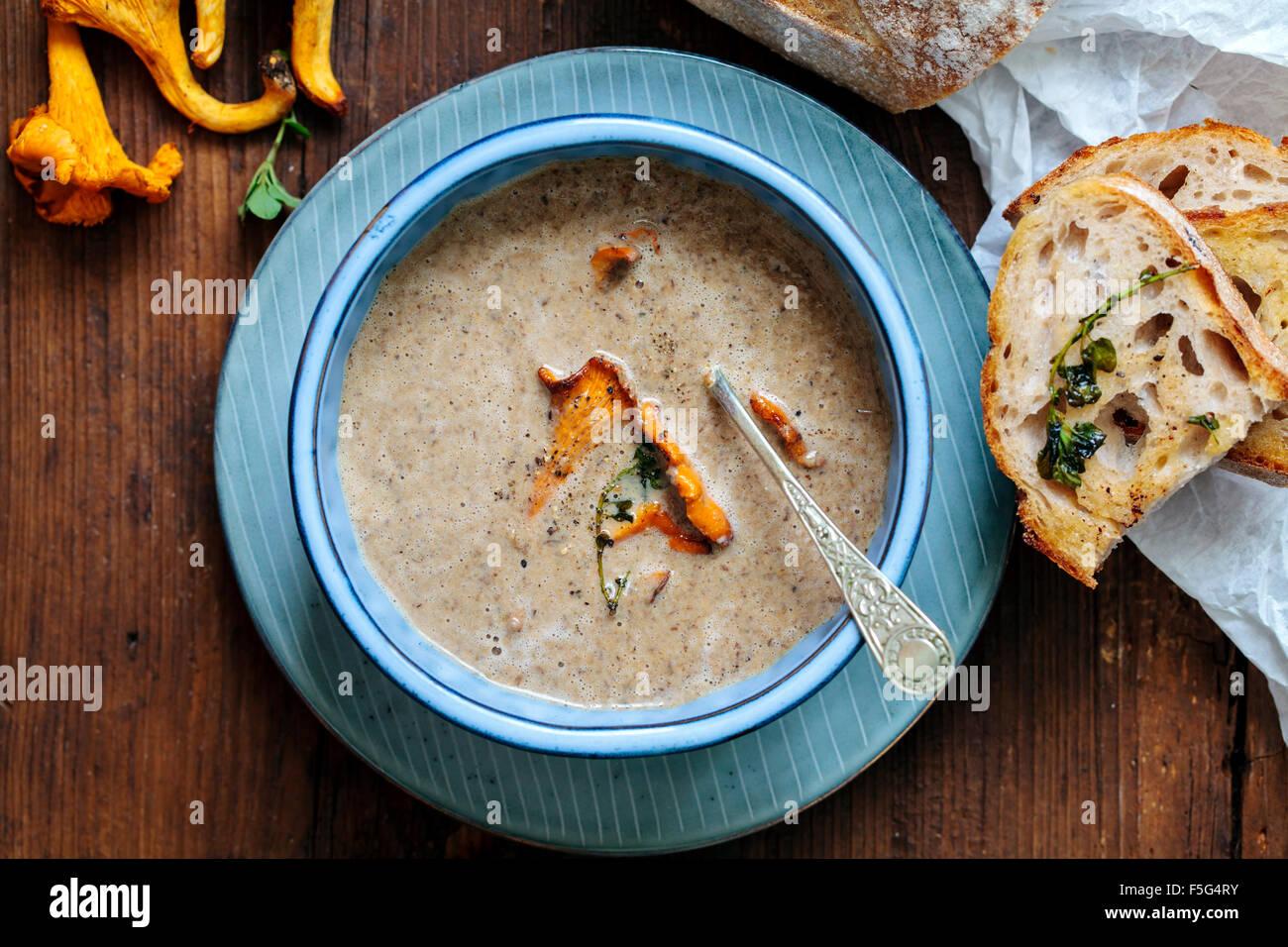 Wild girolle mushrooms soup - Stock Image