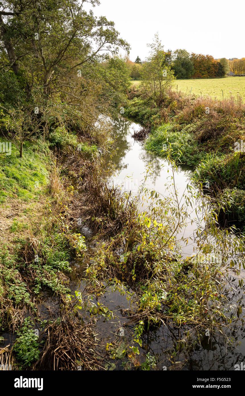 Overgrown River Marden flowing through Stanley in Wiltshire UK - Stock Image