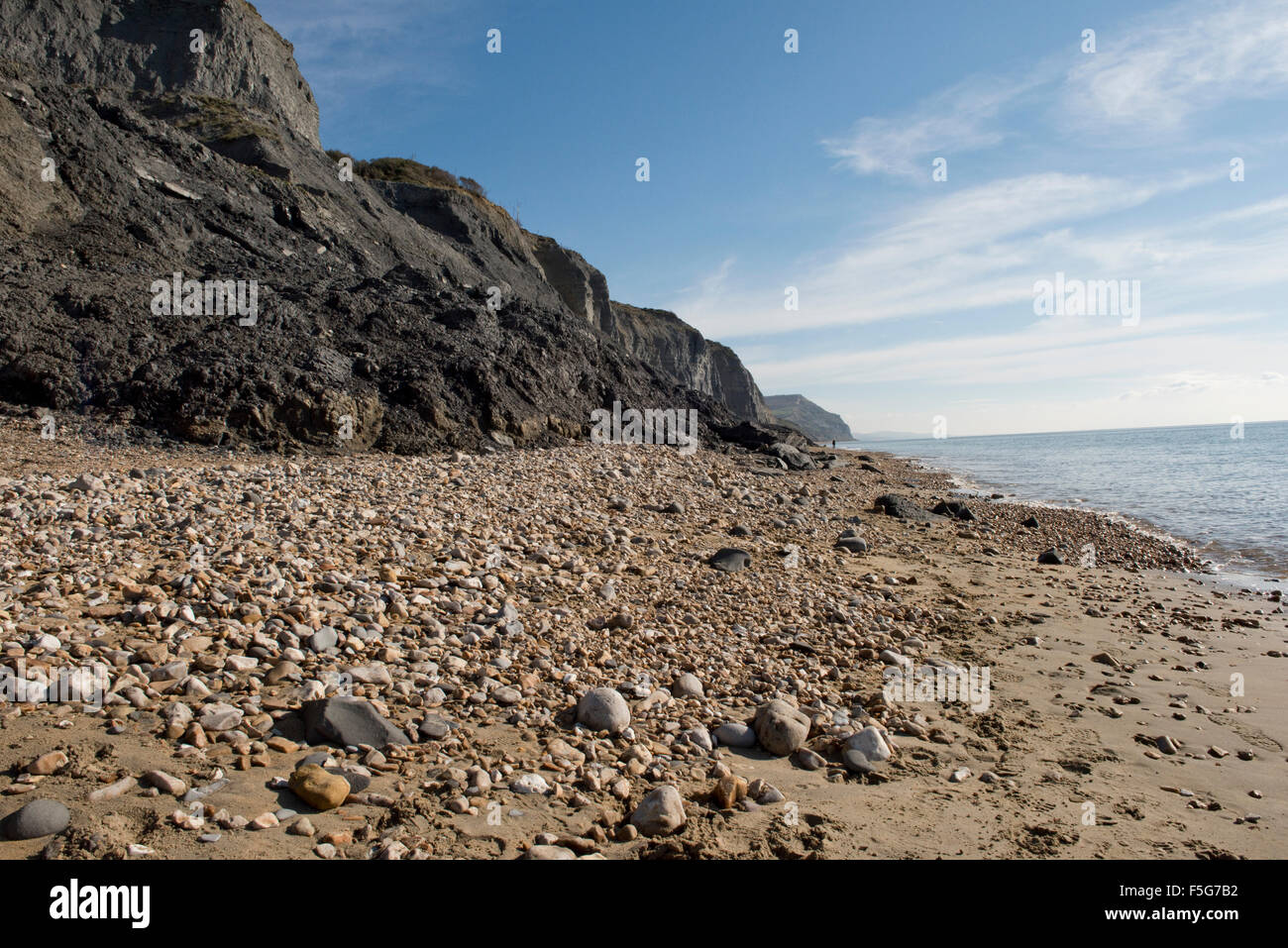 Charmouth Beach on the Jurassic Coast of Dorset with recent rock falls of fossil bearing blue lias or mudstone - Stock Image