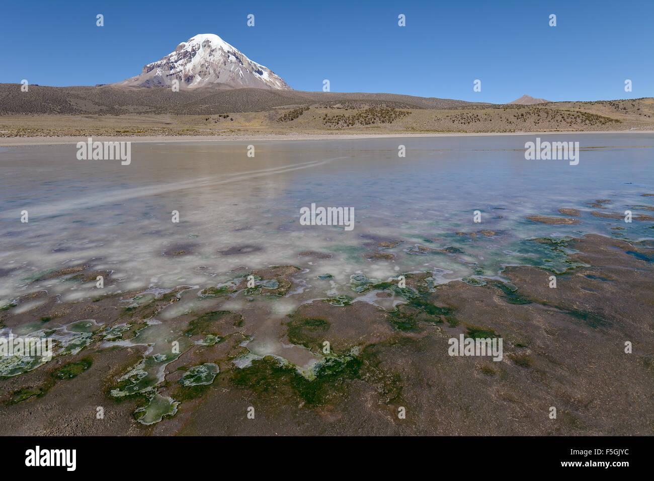 Sajama Volcano and frozen lake on Rio Sajama, Sajama National Park, Oruro, border between Bolivia and Chile - Stock Image