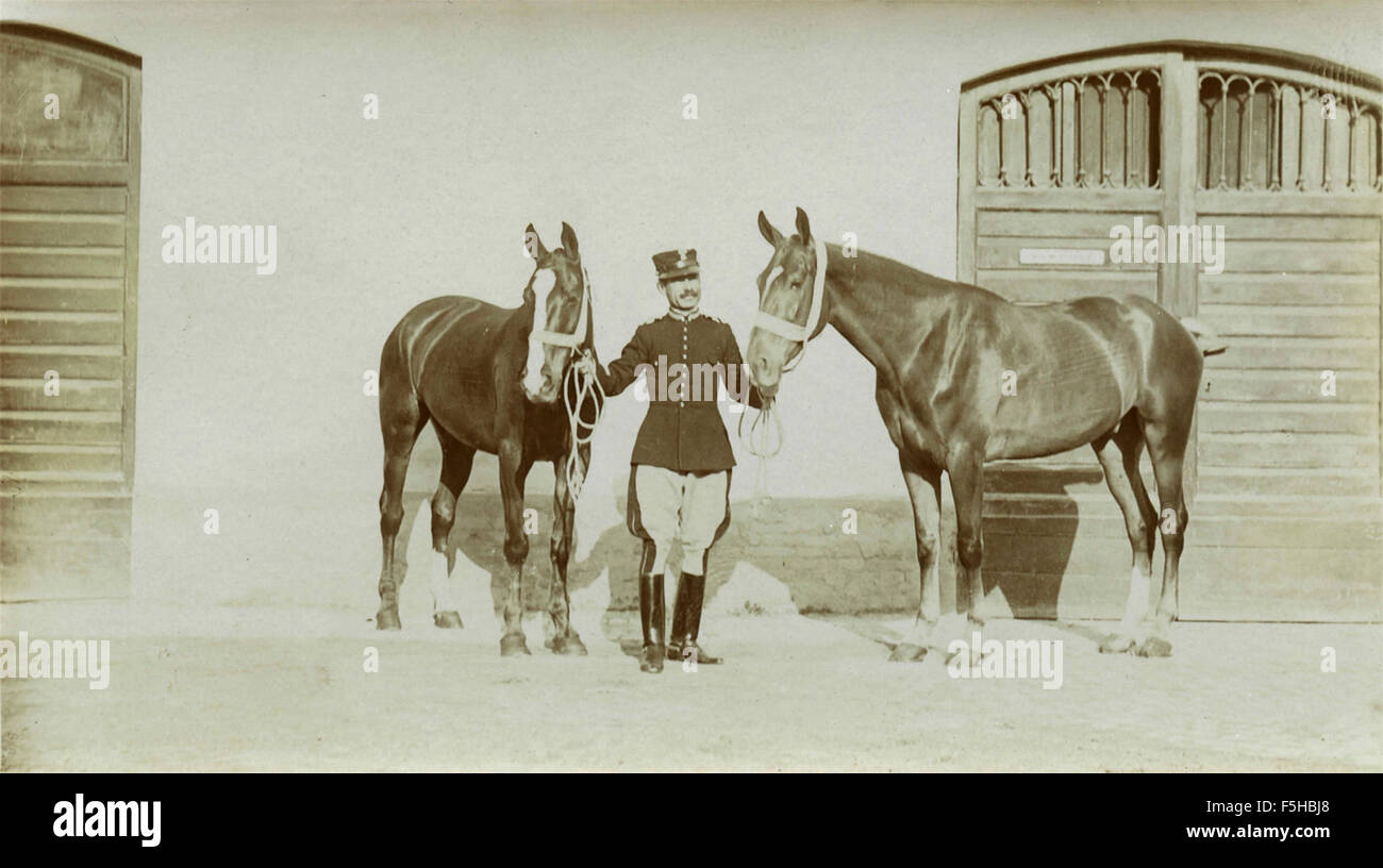 Danish cavalry officer with horses - Stock Image