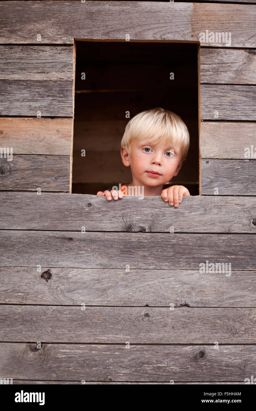 Sweden, Gotland, Faro, Boy (2-3) looking through tree house window - Stock Image
