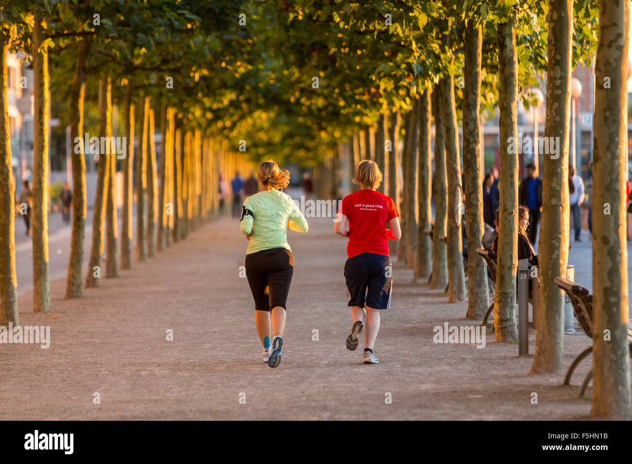 Jogger at Rhine promenade, Düsseldorf, Germany - Stock Image