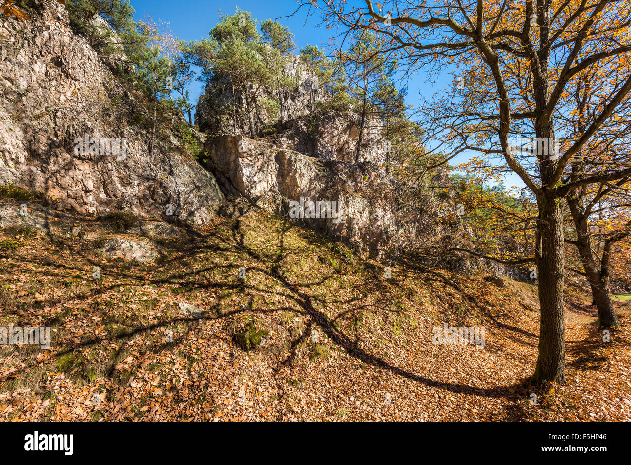 Autumnal Bayerischer Wald PFAHL in Viechtach, Bavarian Forest, hilltop, mountains, quartz, quartz rocks, way, autumn - Stock Image