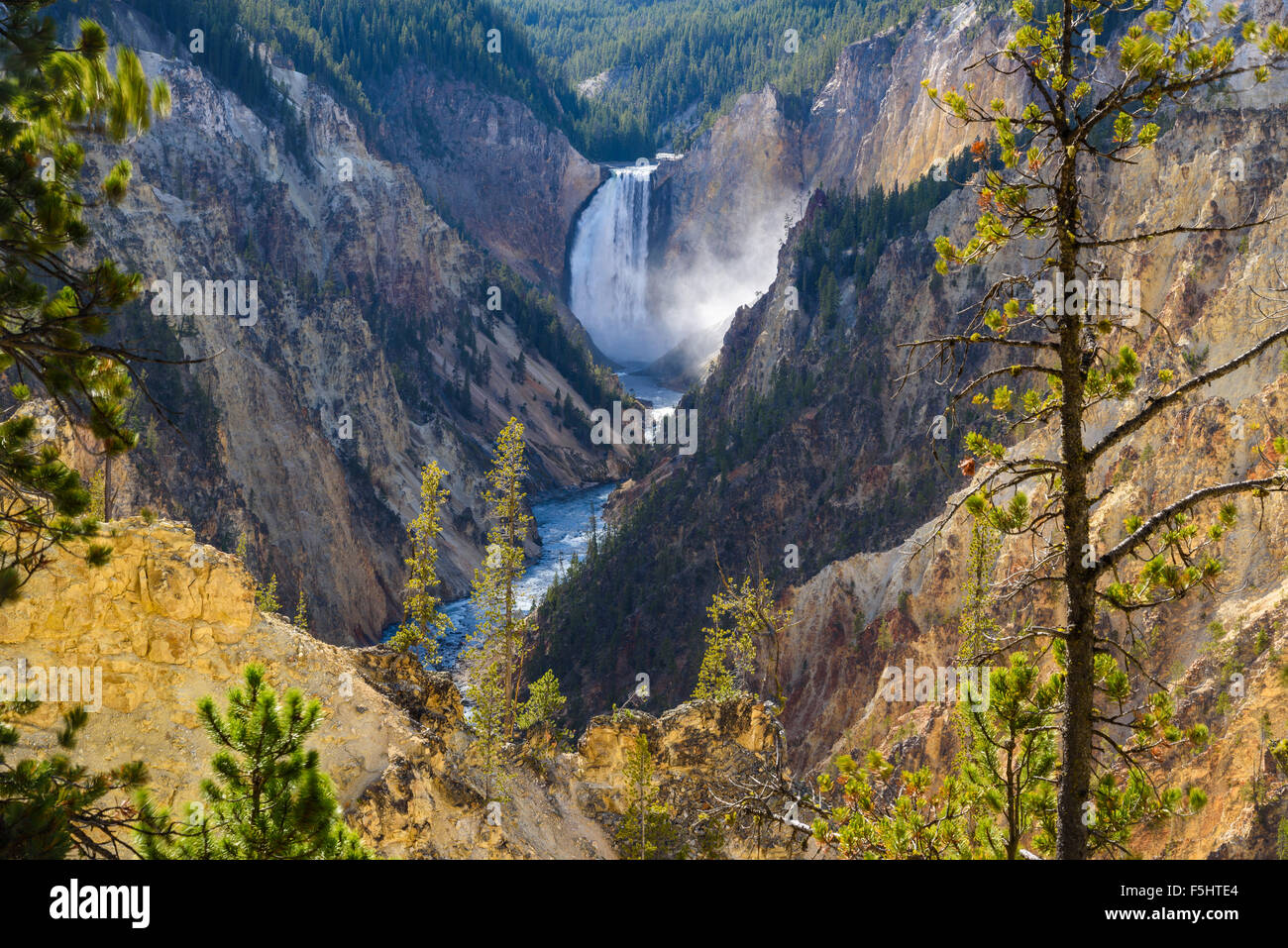Lower Falls and Grand Canyon of the Yellowstone, from Artists Point, Yellowstone National Park, Wyoming, USA - Stock Image