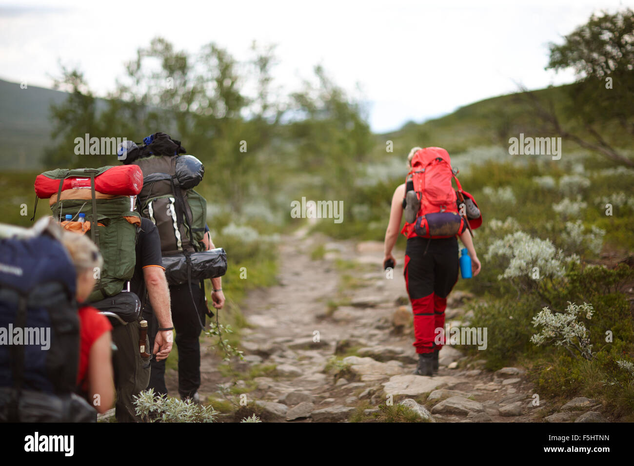 Sweden, Jamtland, People hiking with backpacks - Stock Image