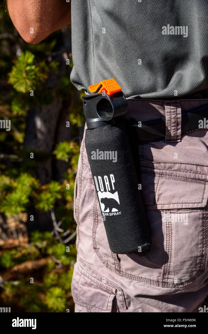 Hiker carrying bear spray, Yellowstone National Park, Wyoming, USA - Stock Image