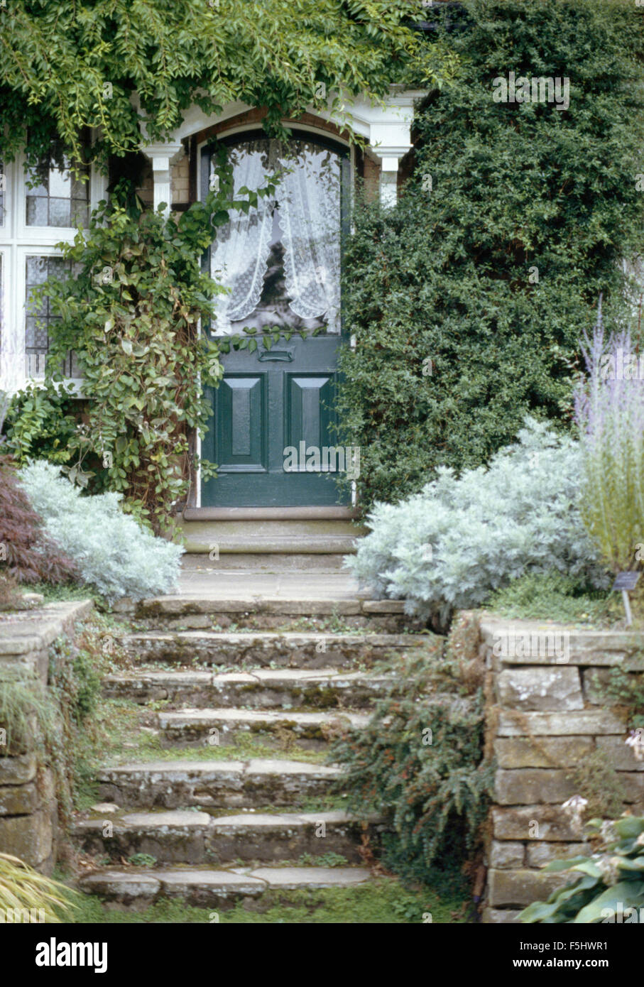 Stone Steps Up To Half Glazed Front Door Of Townhouse With