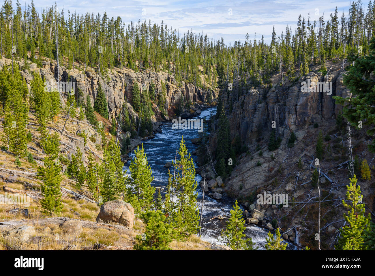 Lewis River, Yellowstone National Park, Wyoming, USA - Stock Image