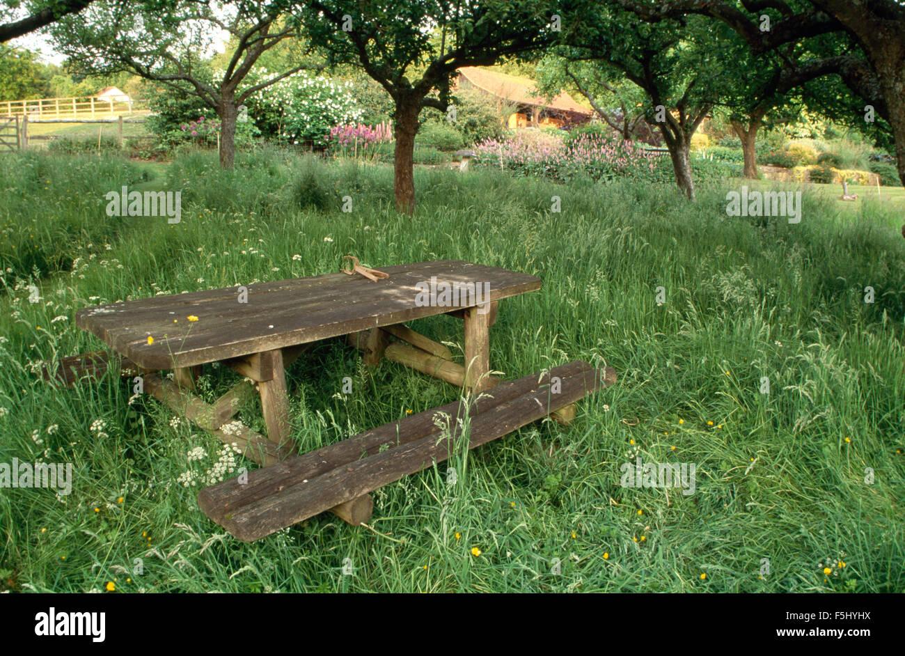 Sensational Rustic Wooden Bench Table In Long Grass Below Trees In Large Inzonedesignstudio Interior Chair Design Inzonedesignstudiocom