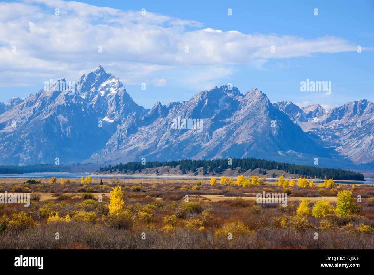 Willow Flats looking towards the Teton Range, Grand Tetons National Park, Wyoming, USA Stock Photo