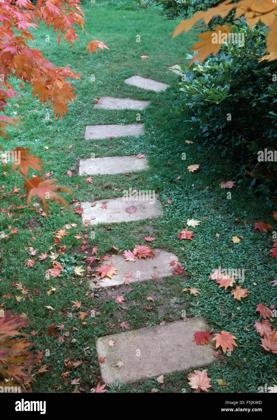 Close-up of stone paving slabs across a lawn in an Autumn garden Stock Photo