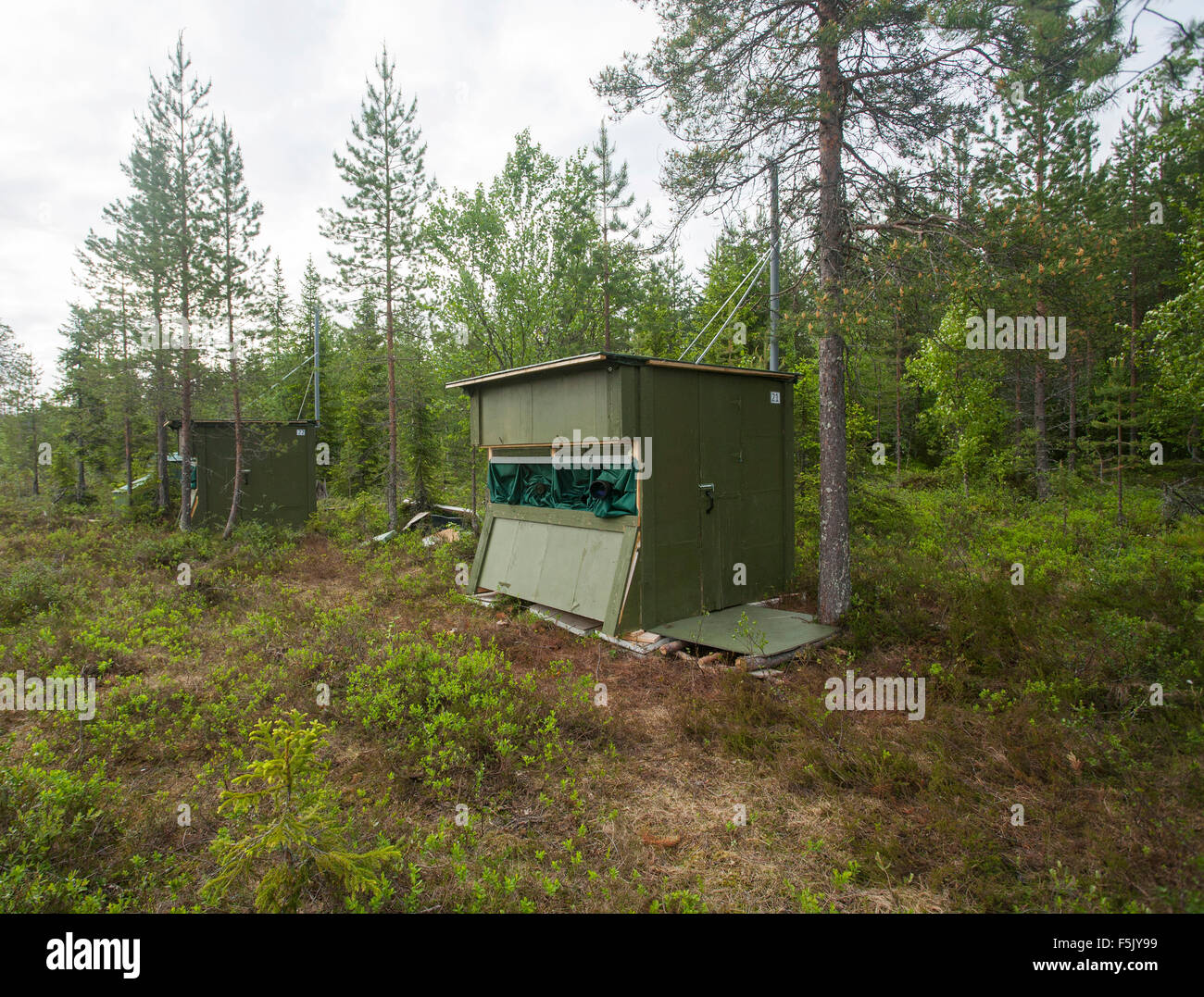 Observation lodges in Finnish Taiga, Kainuu, North Karelia, Finland - Stock Image